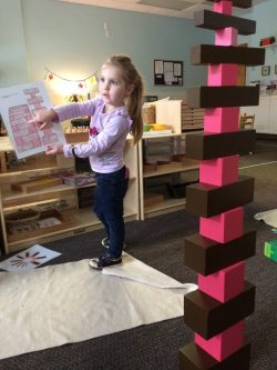 Emalyn pink and brown tower